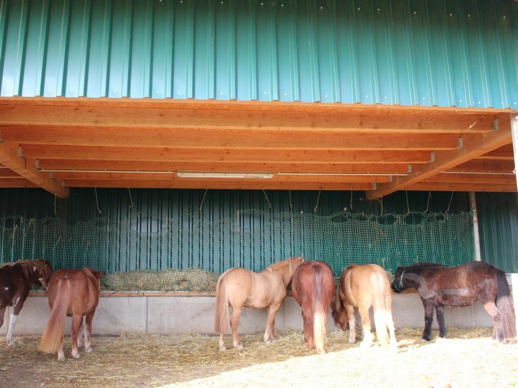 PonystallUnterstand